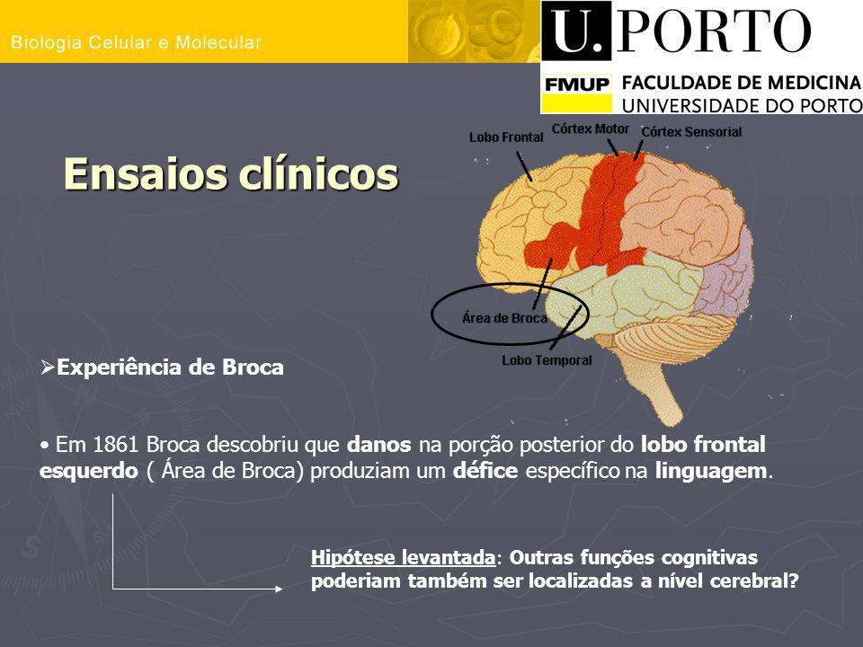 Ensaios clínicos Experiência de Broca Em 1861 Broca descobriu que danos na porção posterior do lobo frontal esquerdo ( Área de Broca) produziam um déf