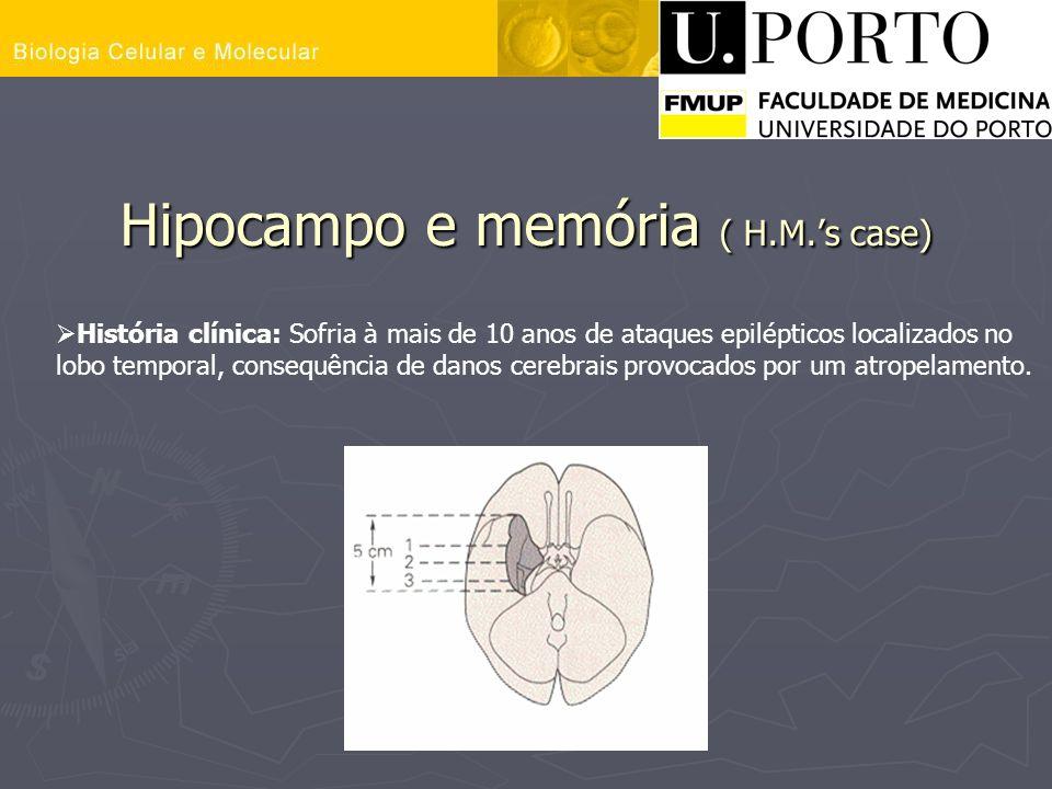 Hipocampo e memória ( H.M.s case) História clínica: Sofria à mais de 10 anos de ataques epilépticos localizados no lobo temporal, consequência de dano