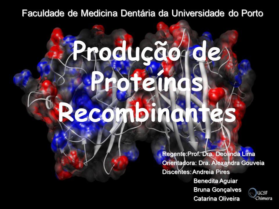 O que são proteínas recombinantes.