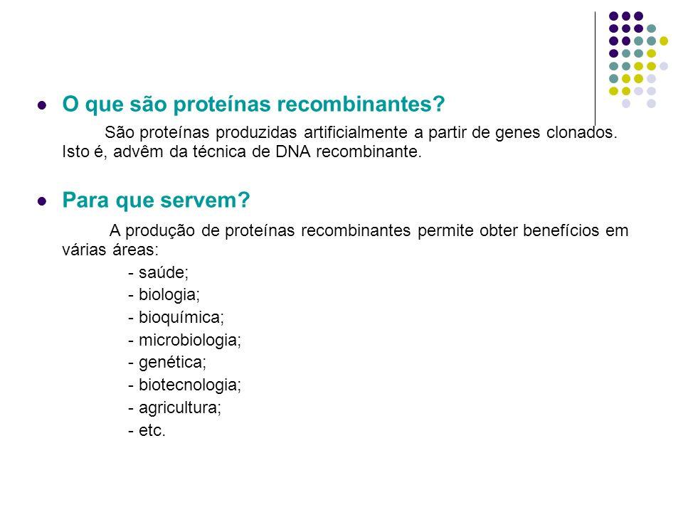 Terapia génica Possibilidade de introdução de um gene num organismo e consequente correcção de doenças genéticas.