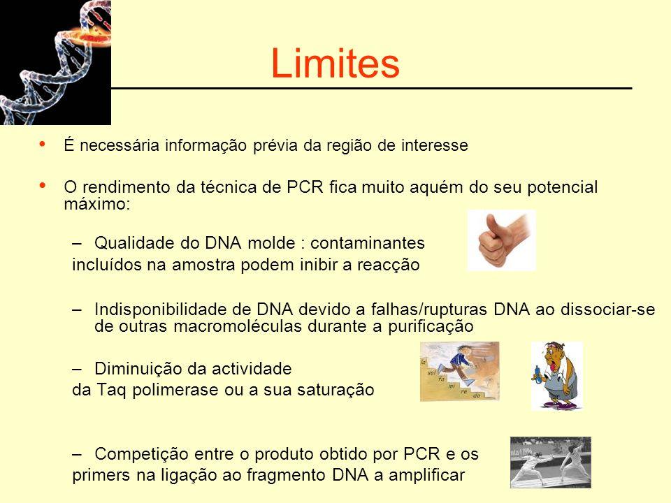 Limites É necessária informação prévia da região de interesse O rendimento da técnica de PCR fica muito aquém do seu potencial máximo: –Qualidade do D