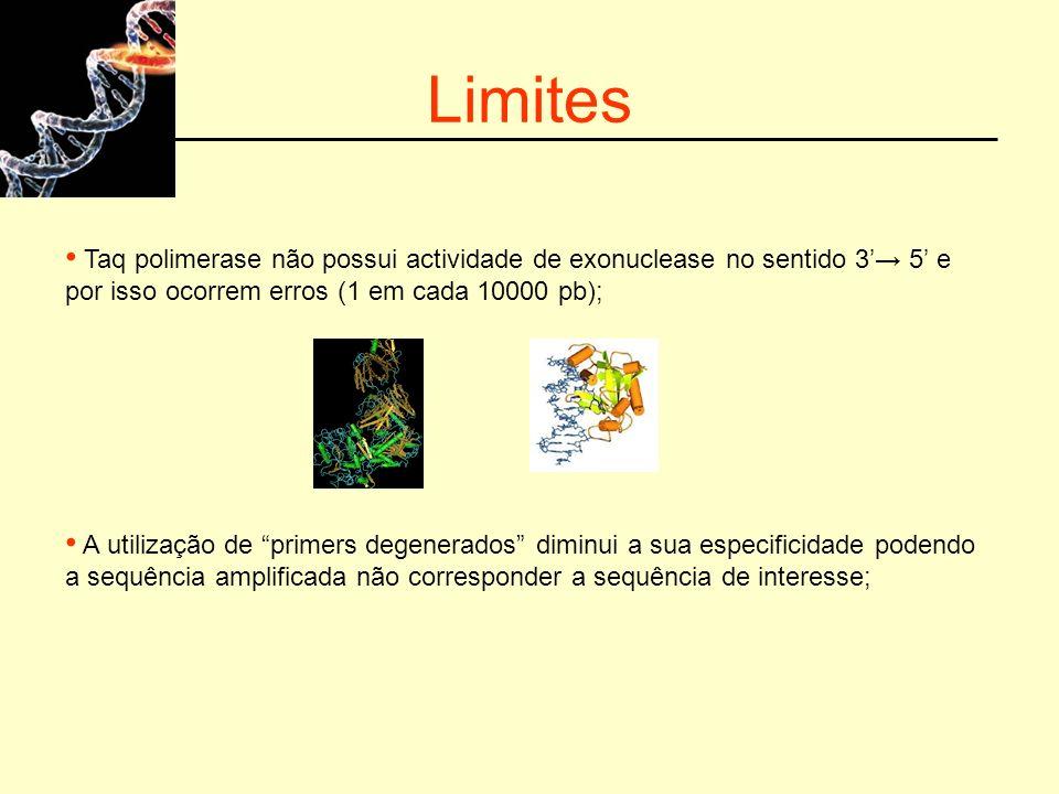 Limites Taq polimerase não possui actividade de exonuclease no sentido 3 5 e por isso ocorrem erros (1 em cada 10000 pb); A utilização de primers dege