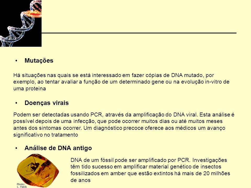 Mutações Doenças virais Análise de DNA antigo DNA de um fóssil pode ser amplificado por PCR. Investigações têm tido sucesso em amplificar material gen