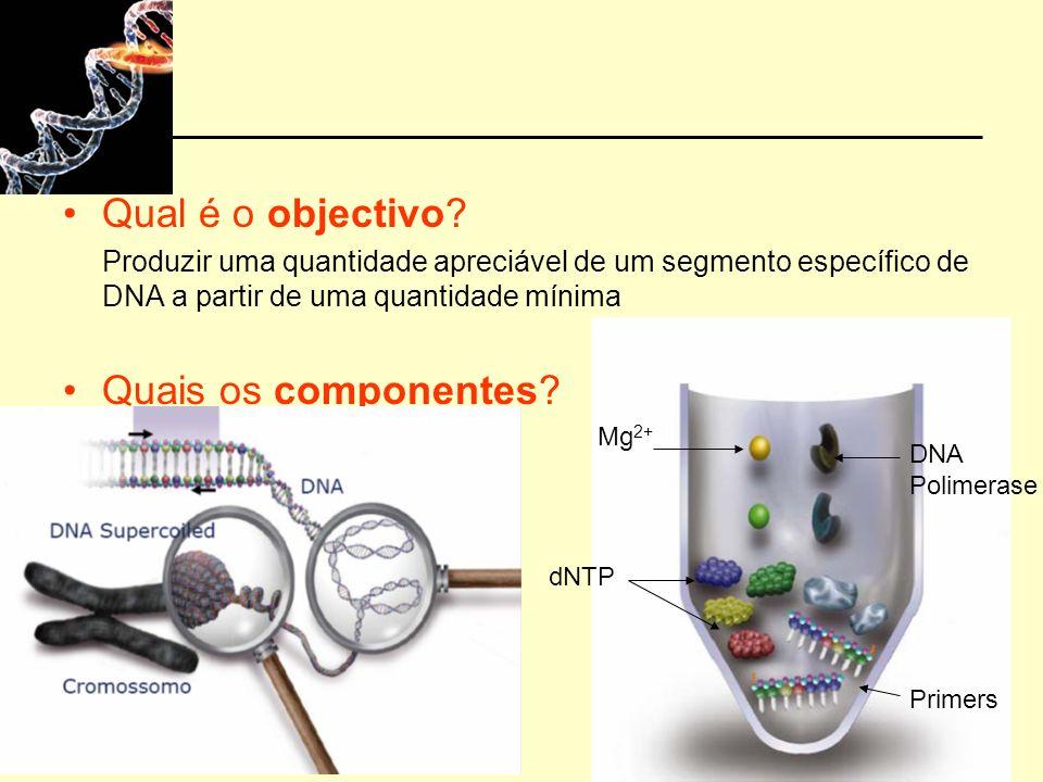 Qual é o objectivo? Produzir uma quantidade apreciável de um segmento específico de DNA a partir de uma quantidade mínima Quais os componentes? Mg 2+