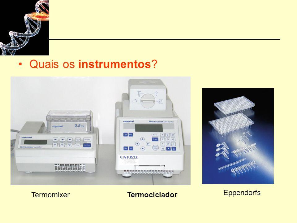Quais os instrumentos? TermomixerTermociclador Eppendorfs