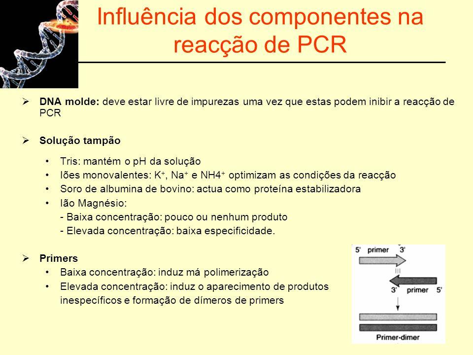 Influência dos componentes na reacção de PCR DNA molde: deve estar livre de impurezas uma vez que estas podem inibir a reacção de PCR Solução tampão T