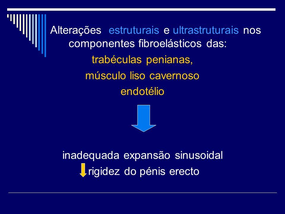 Alterações estruturais e ultrastruturais nos componentes fibroelásticos das: trabéculas penianas, músculo liso cavernoso endotélio inadequada expansão
