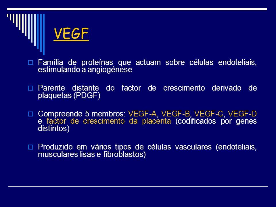 VEGF Família de proteínas que actuam sobre células endoteliais, estimulando a angiogénese Parente distante do factor de crescimento derivado de plaque