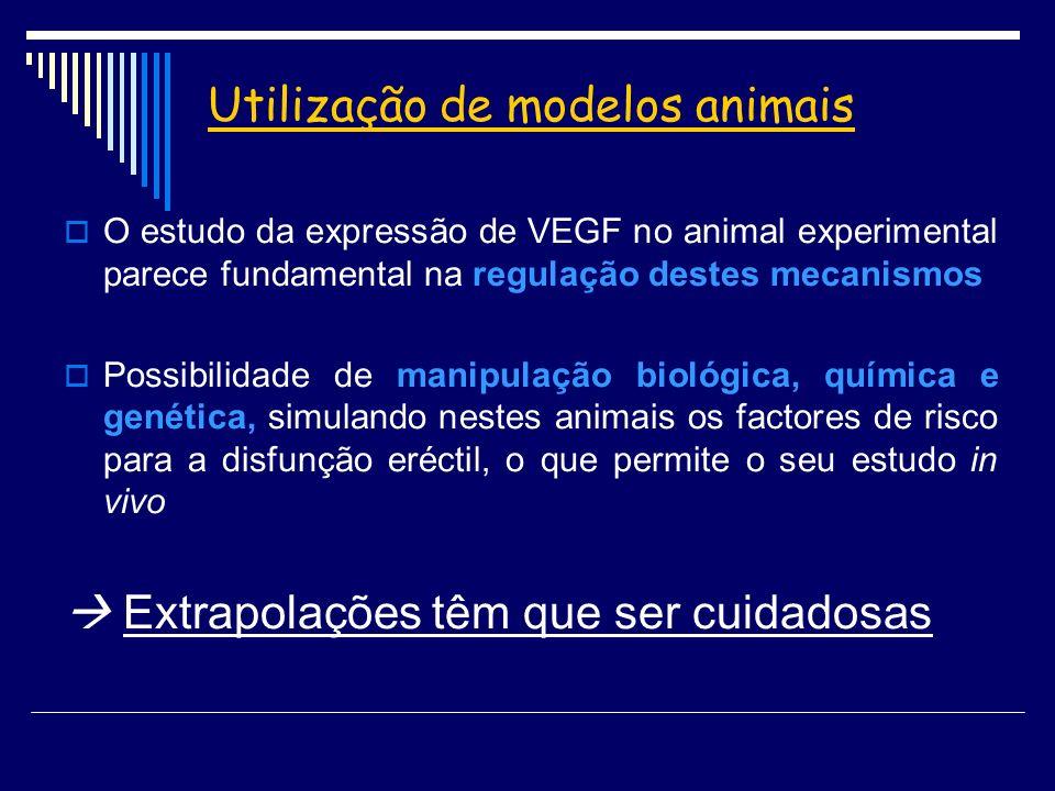 Utilização de modelos animais O estudo da expressão de VEGF no animal experimental parece fundamental na regulação destes mecanismos Possibilidade de