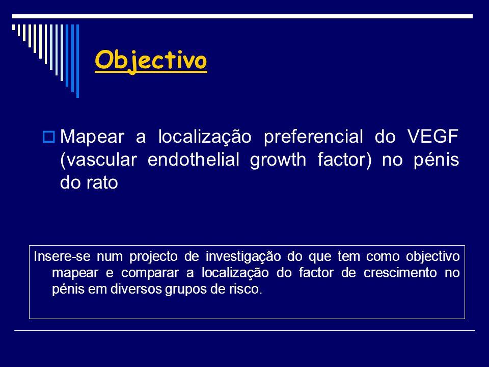 Objectivo Mapear a localização preferencial do VEGF (vascular endothelial growth factor) no pénis do rato Insere-se num projecto de investigação do qu