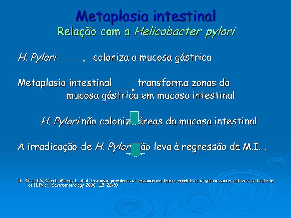 Metaplasia intestinal Relação com a Helicobacter pylori H. Pylori coloniza a mucosa gástrica Metaplasia intestinal transforma zonas da mucosa gástrica