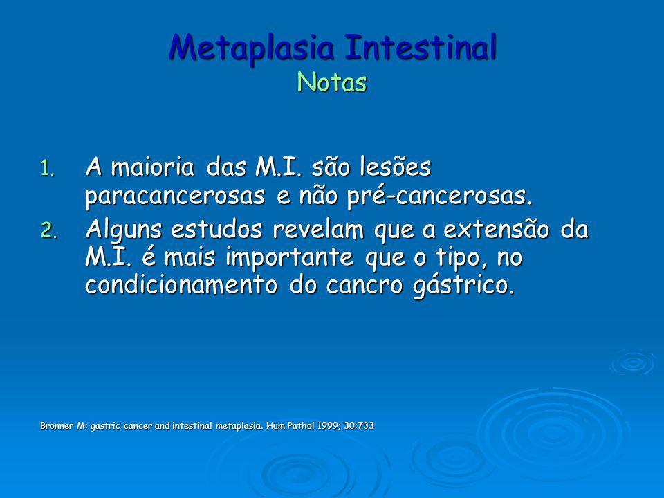 Metaplasia Intestinal Notas 1. A maioria das M.I. são lesões paracancerosas e não pré-cancerosas. 2. Alguns estudos revelam que a extensão da M.I. é m