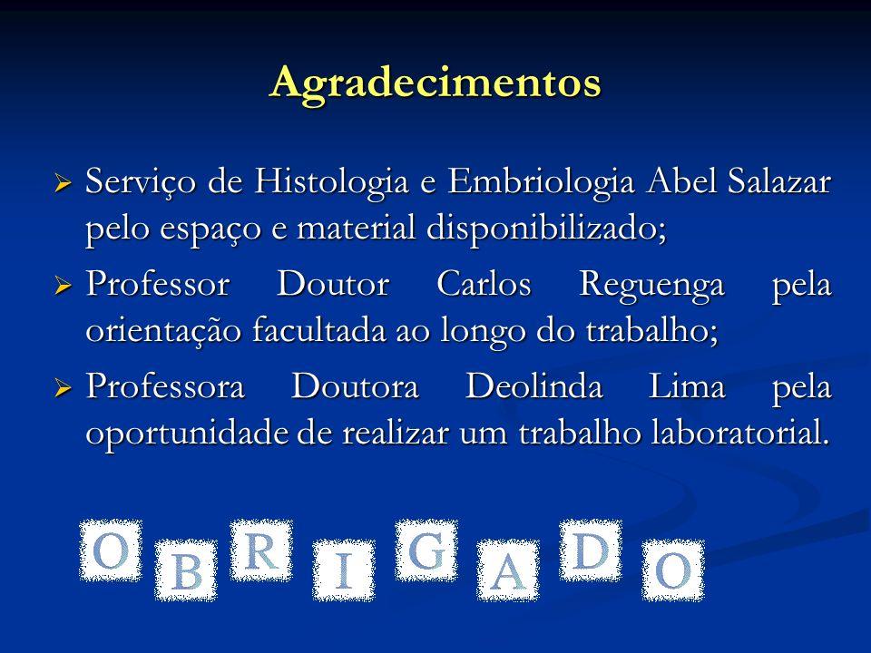 Agradecimentos Serviço de Histologia e Embriologia Abel Salazar pelo espaço e material disponibilizado; Serviço de Histologia e Embriologia Abel Salaz