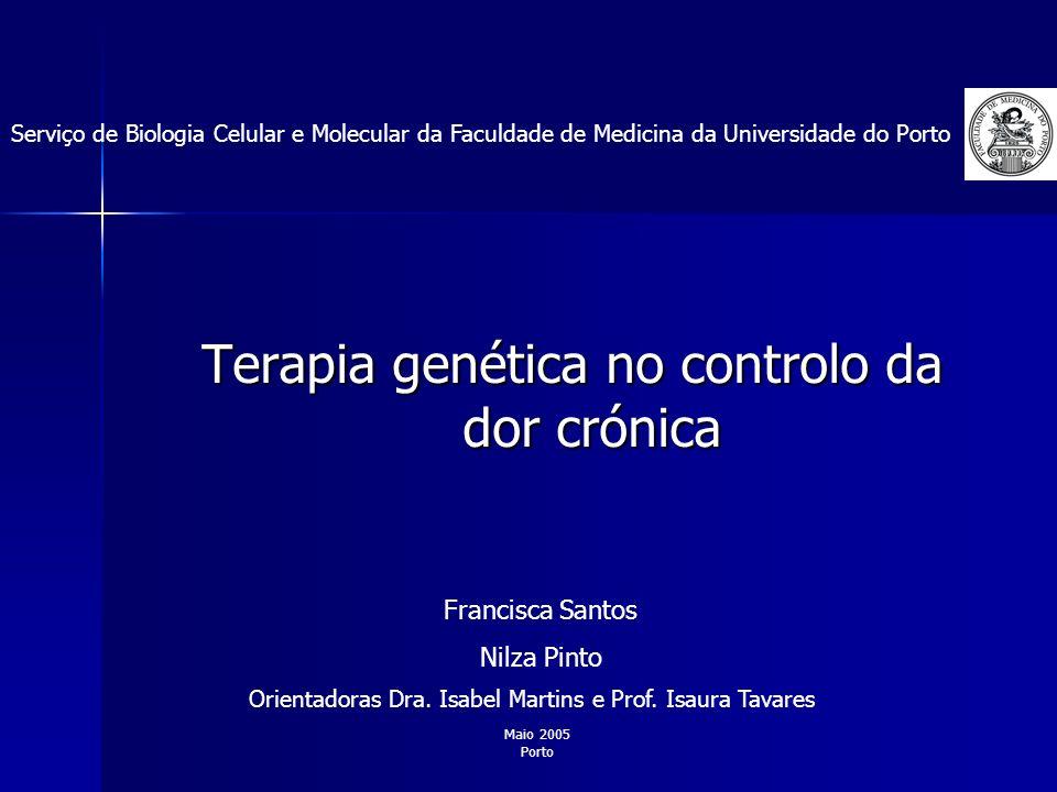 Terapia genética no controlo da dor crónica Serviço de Biologia Celular e Molecular da Faculdade de Medicina da Universidade do Porto Orientadoras Dra