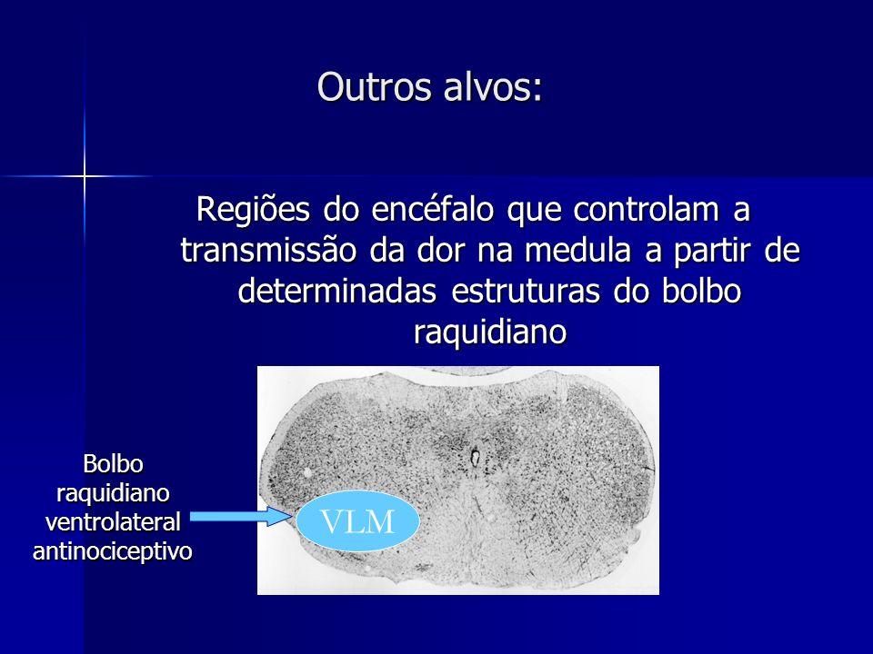 Outros alvos: Regiões do encéfalo que controlam a transmissão da dor na medula a partir de determinadas estruturas do bolbo raquidiano VLM Bolbo raqui