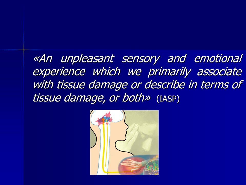 Sistema endógeno de controlo da dor