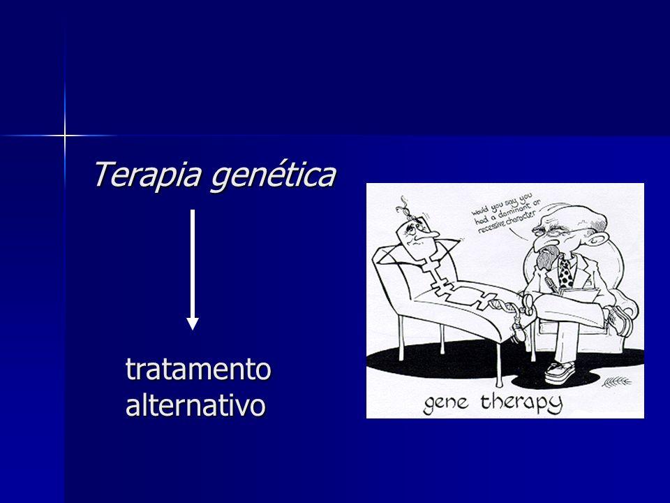 Amplificação do gene da TK nos segmentos torácicos da medula espinhal hCMV-PPA lacZ TK LR 300pb A Optimização do protocolo DNA do controlo+ 1)Temperatura de annealing a 60 e 62ºC 2)Concentração de MgCl2 (cofactor da Taq Polimerase) a A:2,5mM e B:4mM 3)Betaina optimiza condições de PCR estabilizando o DNA 4)Condições escolhidas Temperatura de annealing 60ºC -2,5mM de MgCl 2 95ºC-45sec 60ºC-30sec 72ºC-45sec 30 ciclos BBA 60ºC62ºC