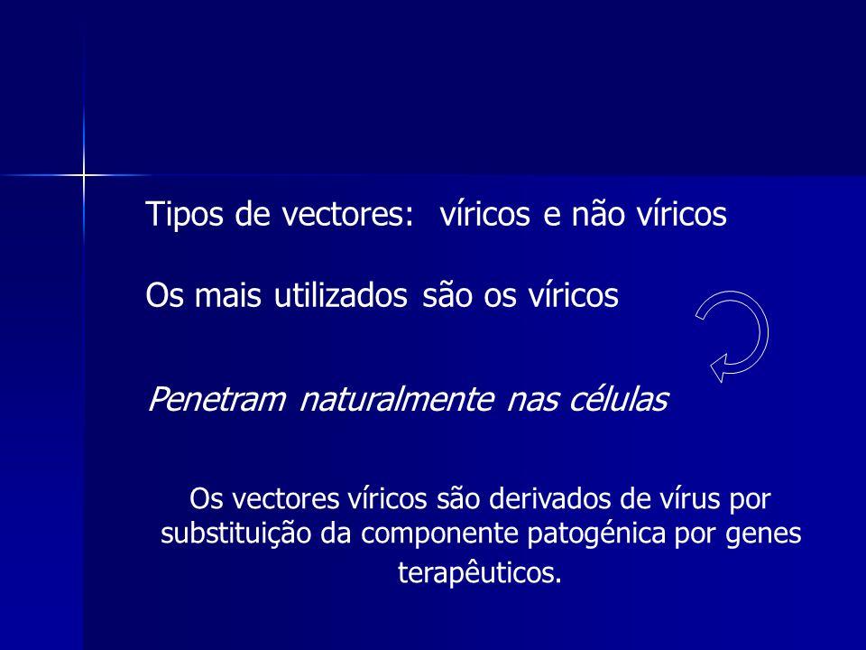 Tipos de vectores: víricos e não víricos Os mais utilizados são os víricos Os vectores víricos são derivados de vírus por substituição da componente p
