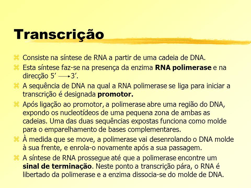 zConsiste na síntese de RNA a partir de uma cadeia de DNA. zEsta síntese faz-se na presença da enzima RNA polimerase e na direcção 5 3. zA sequência d