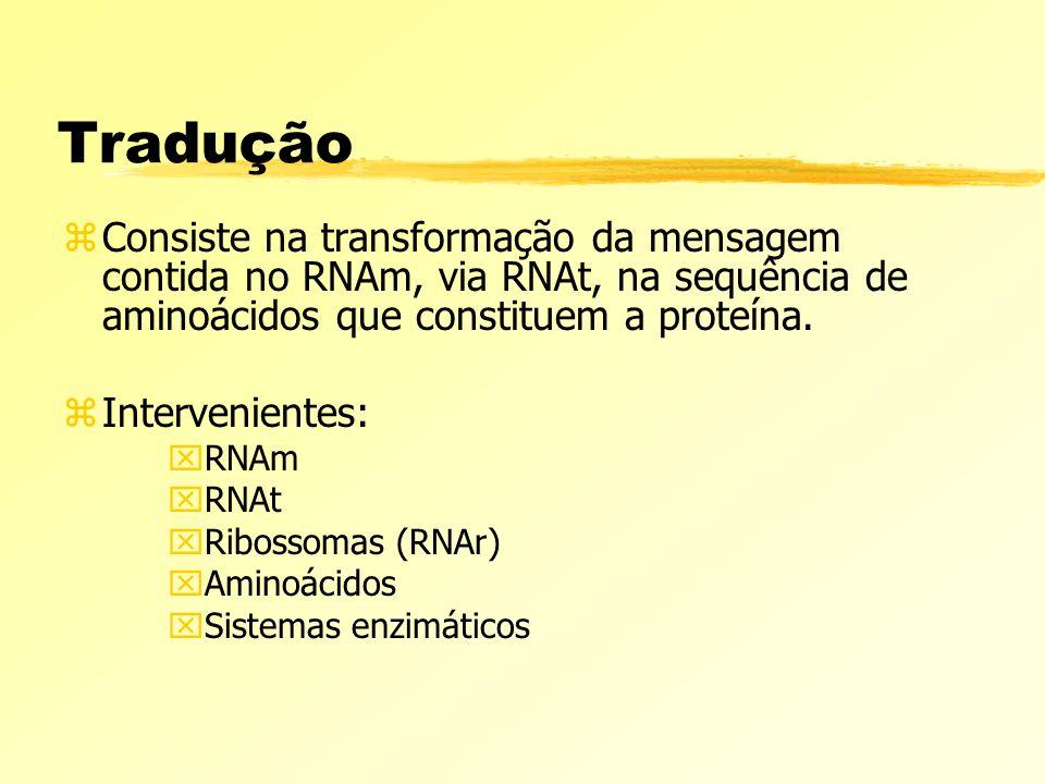 Tradução zConsiste na transformação da mensagem contida no RNAm, via RNAt, na sequência de aminoácidos que constituem a proteína. zIntervenientes: xRN