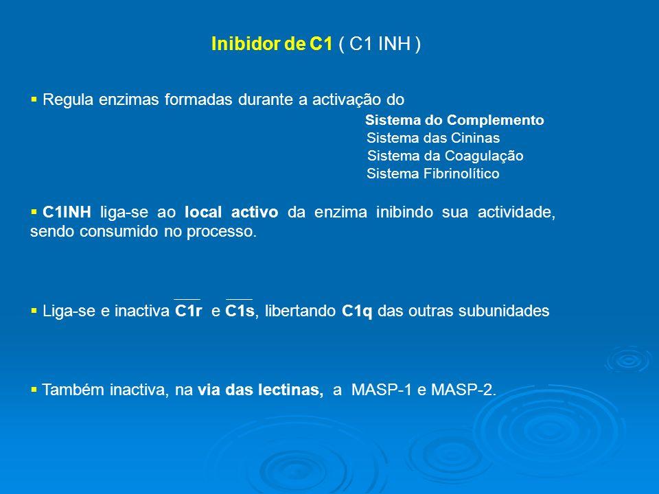 Inibidor de C1 ( C1 INH ) Regula enzimas formadas durante a activação do Sistema do Complemento Sistema das Cininas Sistema da Coagulação Sistema Fibrinolítico C1INH liga-se ao local activo da enzima inibindo sua actividade, sendo consumido no processo.