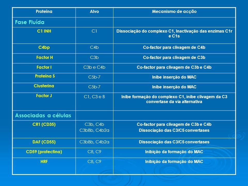 ProteínaAlvoMecanismo de acção Fase Fluída C1 INH C1 Dissociação do complexo C1, Inactivação das enzimas C1r e C1s C4bp C4b Co-factor para clivagem de C4b Factor H C3b Co-factor para clivagem de C3b Factor I C3b e C4b Co-factor para clivagem de C3b e C4b Proteína S C5b-7 Inibe inserção do MAC Clusterina C5b-7 Inibe inserção do MAC Factor J C1, C3 e B Inibe formação do complexo C1, inibe clivagem da C3 convertase da via alternativa Associadas a células CR1 (CD35) C3b, C4b C3bBb, C4b2a Co-factor para clivagem de C3b e C4b Dissociação das C3/C5 convertases DAF (CD55) C3bBb, C4b2a Dissociação das C3/C5 convertases CD59 (protectina) C8, C9 Inibição da formação do MAC HRF C8, C9 Inibição da formação do MAC