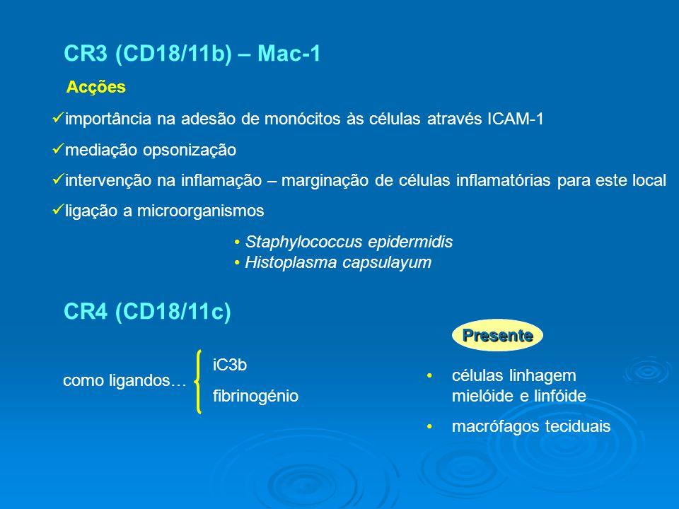 CR3 (CD18/11b) – Mac-1 Staphylococcus epidermidis Histoplasma capsulayum CR4 (CD18/11c) células linhagem mielóide e linfóide macrófagos teciduais como ligandos… iC3b fibrinogénio importância na adesão de monócitos às células através ICAM-1 mediação opsonização intervenção na inflamação – marginação de células inflamatórias para este local ligação a microorganismos Presente Acções
