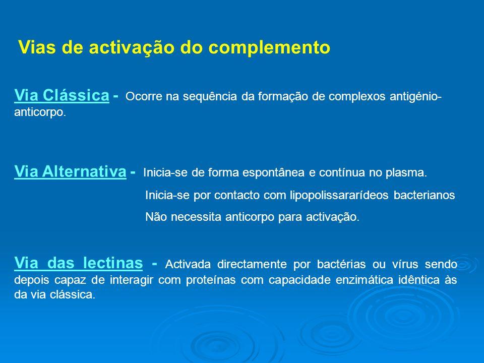Vias de activação do complemento Via Clássica - Ocorre na sequência da formação de complexos antigénio- anticorpo.