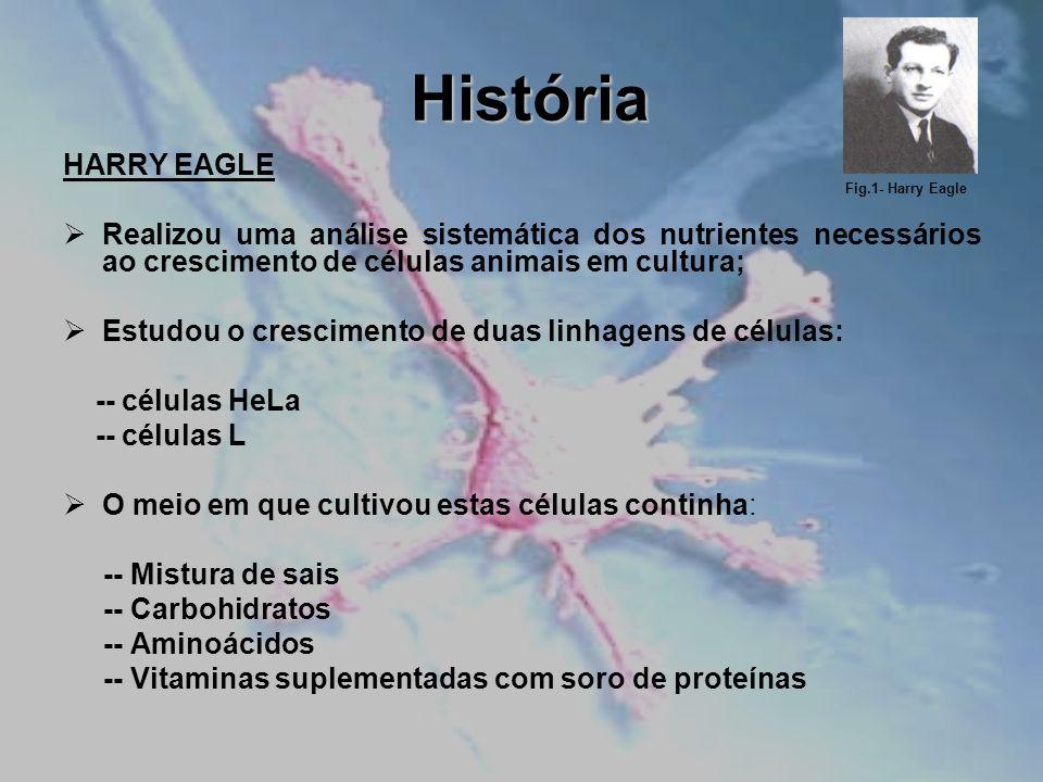 História HARRY EAGLE Realizou uma análise sistemática dos nutrientes necessários ao crescimento de células animais em cultura; Estudou o crescimento d