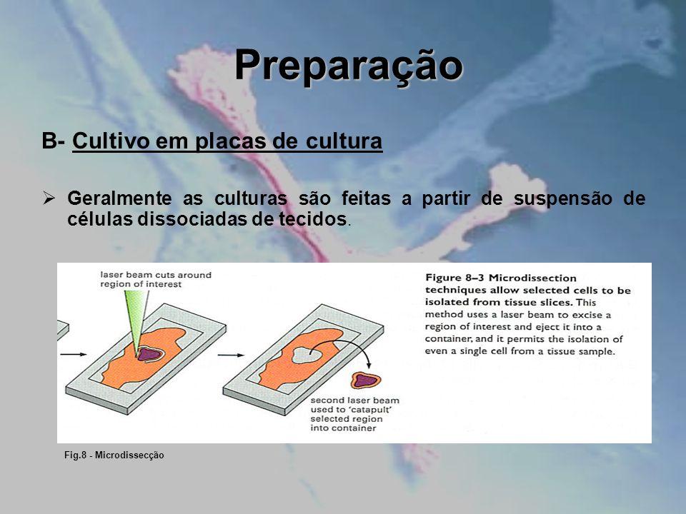 Preparação B- Cultivo em placas de cultura Geralmente as culturas são feitas a partir de suspensão de células dissociadas de tecidos. Fig.8 - Microdis