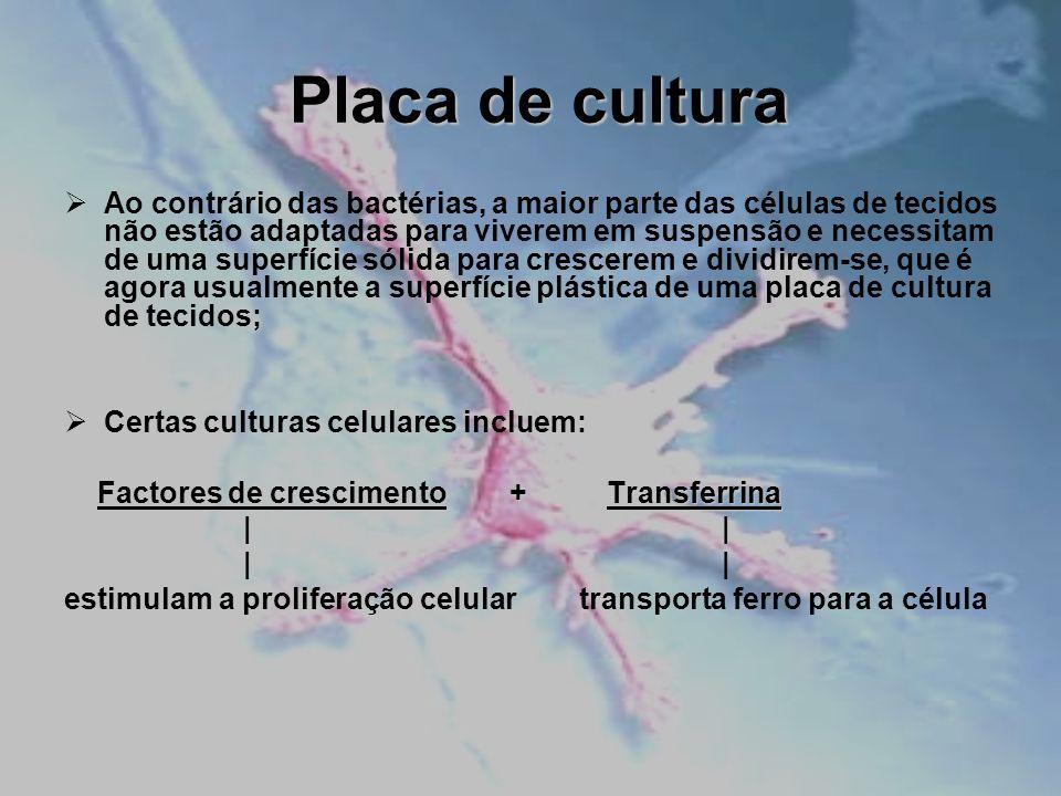 Placa de cultura Ao contrário das bactérias, a maior parte das células de tecidos não estão adaptadas para viverem em suspensão e necessitam de uma su