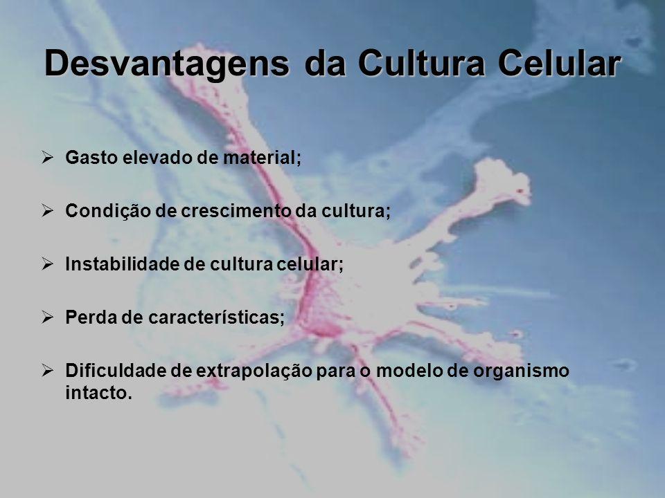 Desvantagens da Cultura Celular Gasto elevado de material; Condição de crescimento da cultura; Instabilidade de cultura celular; Perda de característi