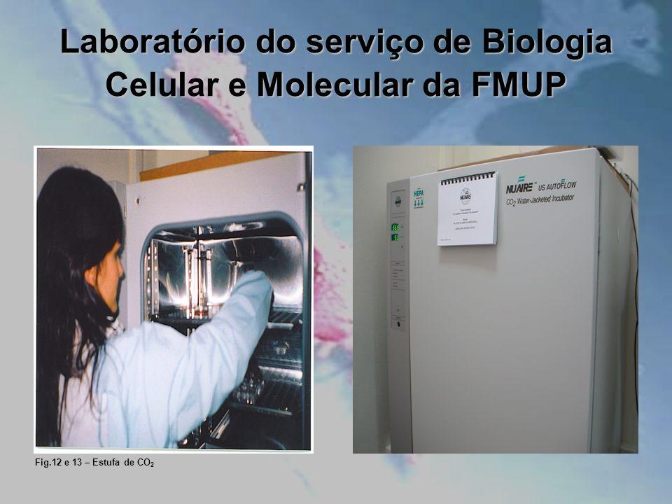 Laboratório do serviço de Biologia Celular e Molecular da FMUP Fig.12 e 13 – Estufa de CO 2