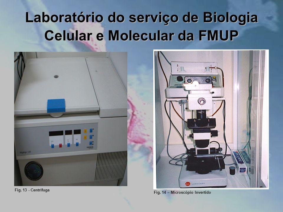 Laboratório do serviço de Biologia Celular e Molecular da FMUP Fig. 13 - Centrífuga Fig. 14 – Microscópio Invertido