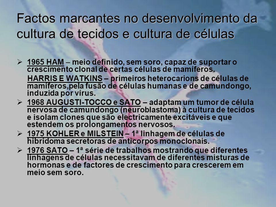 Vantagens da Cultura Celular Possibilidade de estudar fenómenos,inacessíveis em tecidos intactos; Controlo das condições ambientais (pH, temperatura, concentração de O 2 e CO 2, etc); Obtenção de células com boa homogeneidade e bem caracterizadas; Economia de reagentes, tempo, etc.