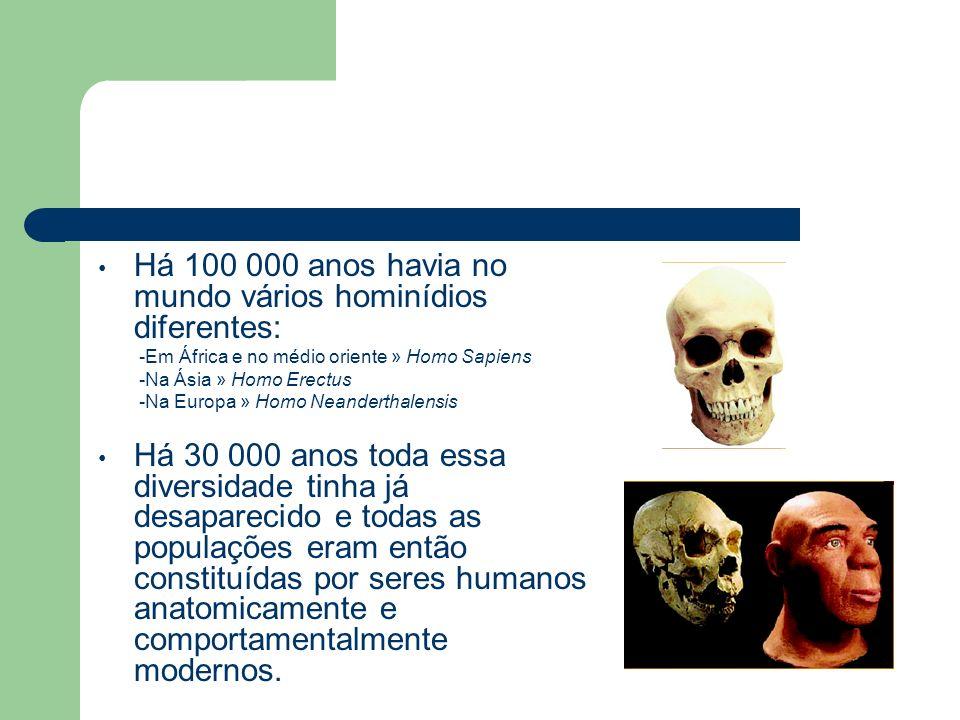 Há 100 000 anos havia no mundo vários hominídios diferentes: -Em África e no médio oriente » Homo Sapiens -Na Ásia » Homo Erectus -Na Europa » Homo Ne