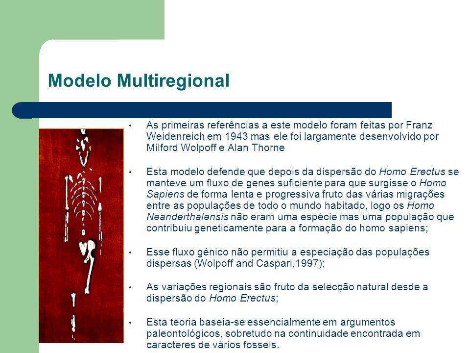 Modelo Multiregional As primeiras referências a este modelo foram feitas por Franz Weidenreich em 1943 mas ele foi largamente desenvolvido por Milford