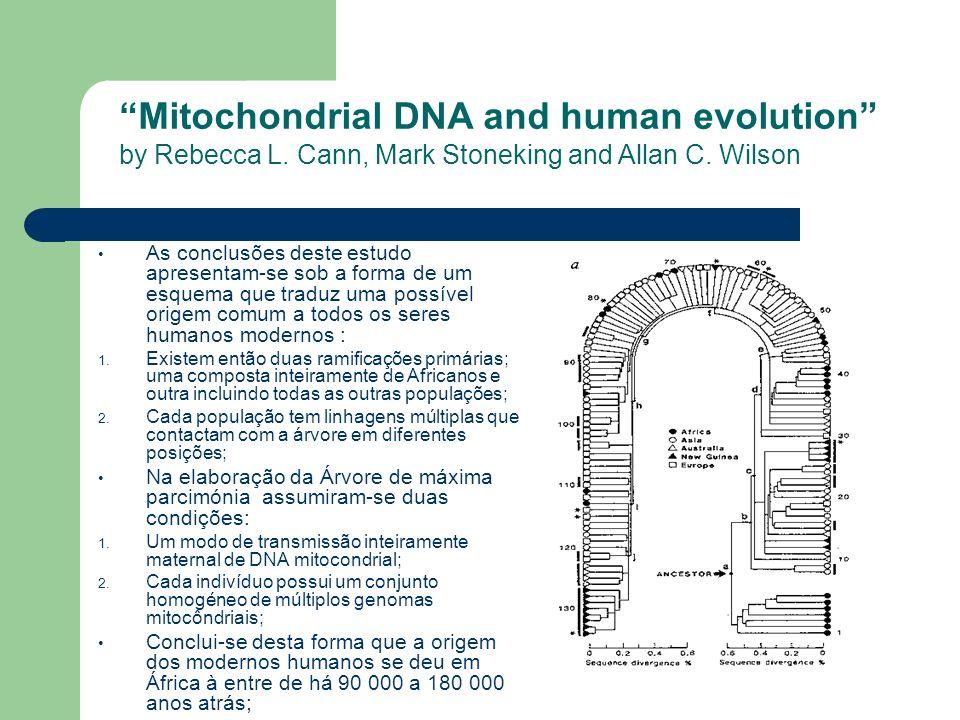 As conclusões deste estudo apresentam-se sob a forma de um esquema que traduz uma possível origem comum a todos os seres humanos modernos : 1. Existem