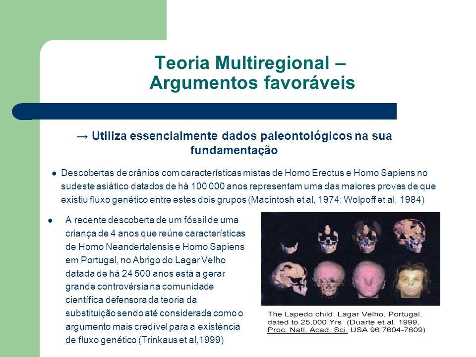 Teoria Multiregional – Argumentos favoráveis A recente descoberta de um fóssil de uma criança de 4 anos que reúne características de Homo Neandertalen