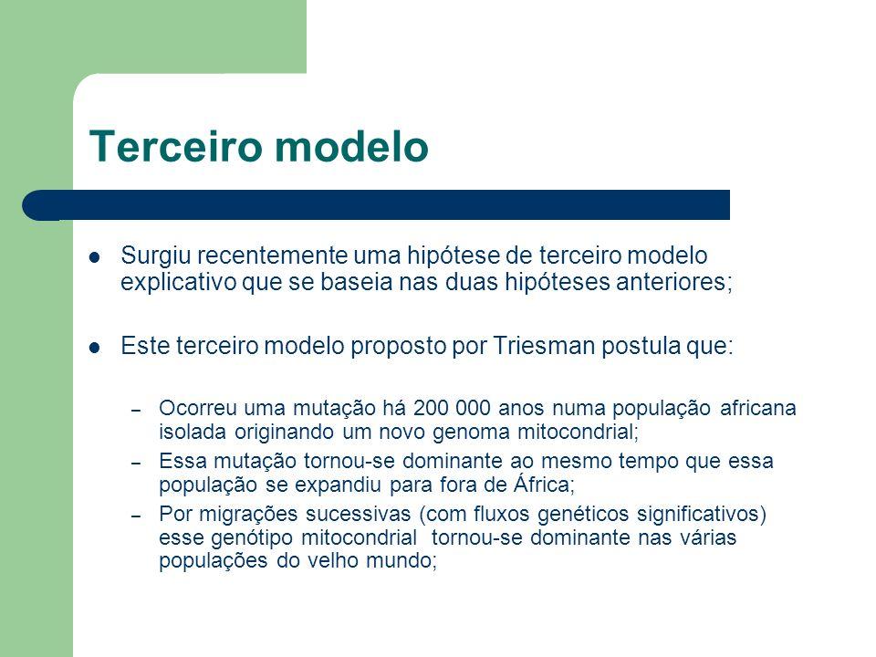 Terceiro modelo Surgiu recentemente uma hipótese de terceiro modelo explicativo que se baseia nas duas hipóteses anteriores; Este terceiro modelo prop