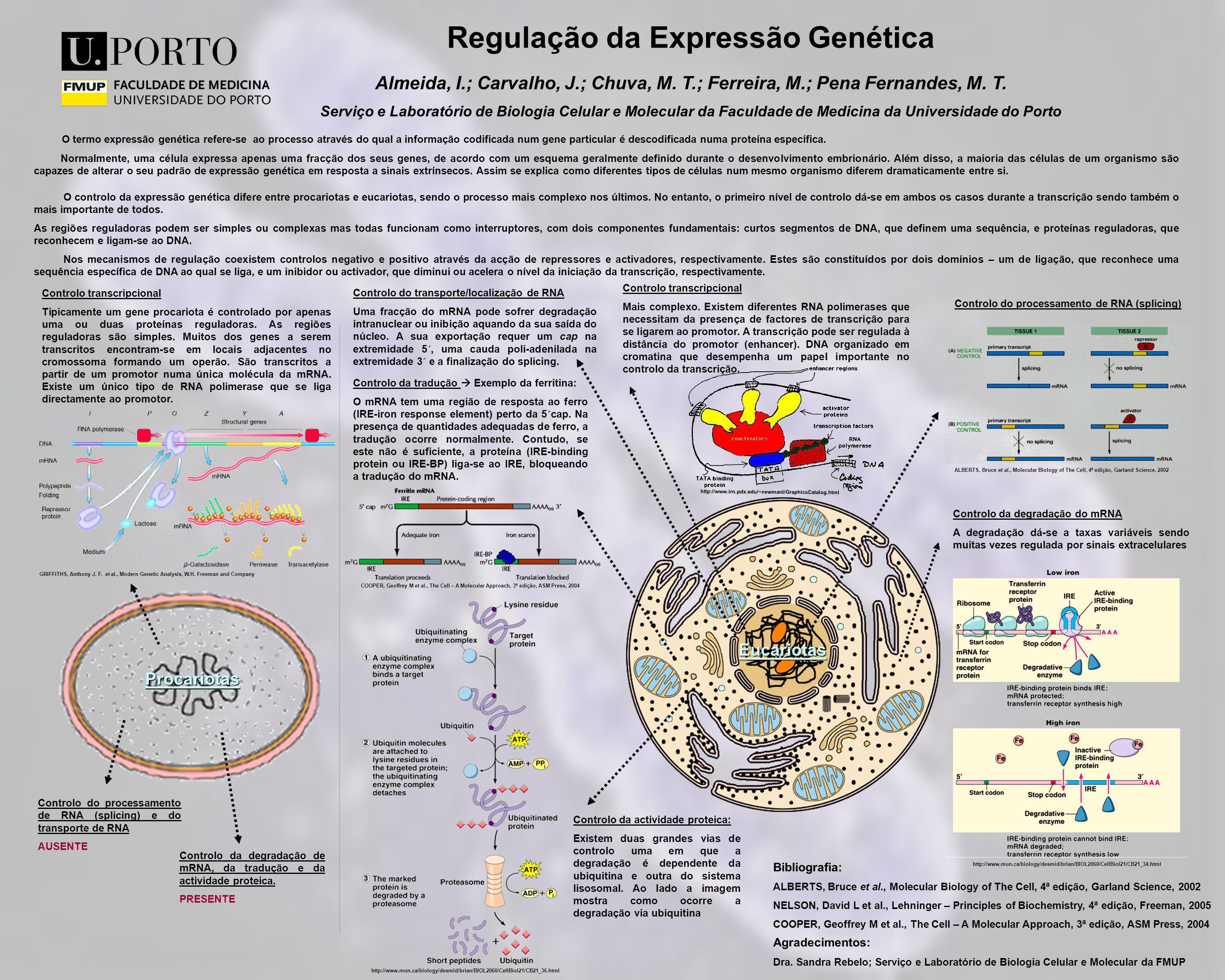 Regulação da Expressão Genética Almeida, I.; Carvalho, J.; Chuva, M. T.; Ferreira, M.; Pena Fernandes, M. T. Serviço e Laboratório de Biologia Celular
