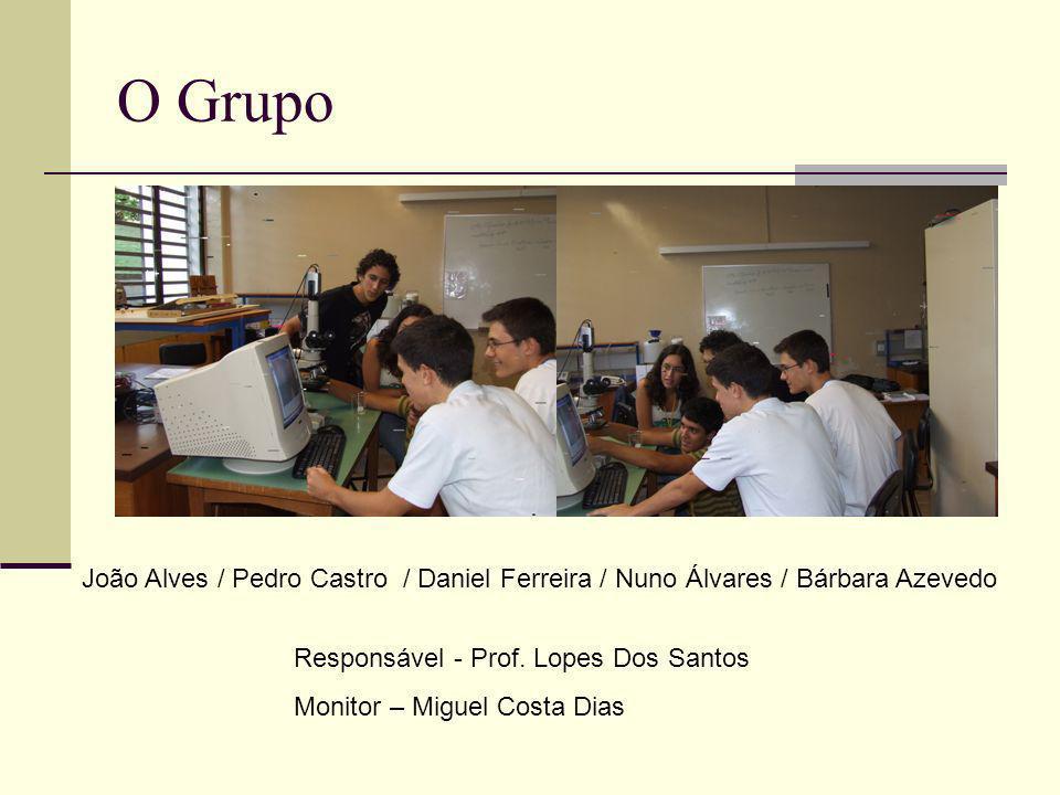 O Grupo João Alves / Pedro Castro / Daniel Ferreira / Nuno Álvares / Bárbara Azevedo Responsável - Prof. Lopes Dos Santos Monitor – Miguel Costa Dias
