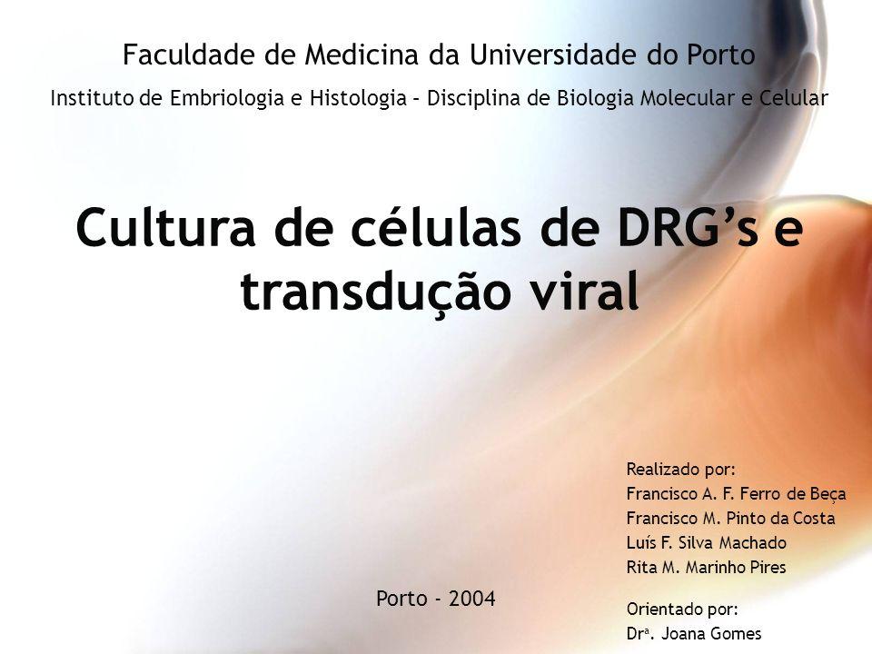 Cultura de células de DRGs e transdução viral Faculdade de Medicina da Universidade do Porto Instituto de Embriologia e Histologia – Disciplina de Bio
