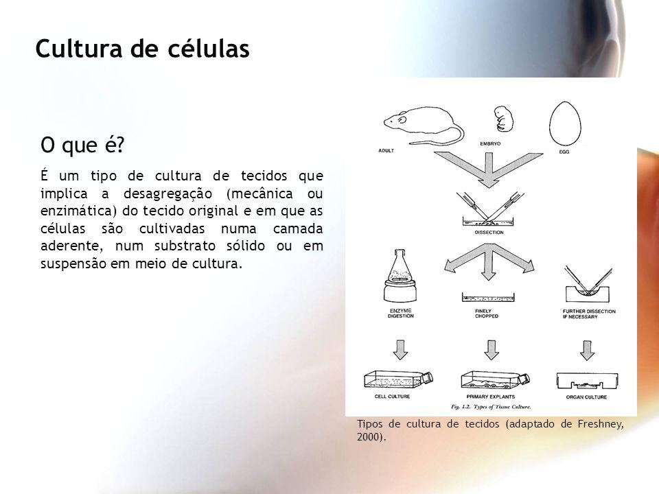 O que é? É um tipo de cultura de tecidos que implica a desagregação (mecânica ou enzimática) do tecido original e em que as células são cultivadas num