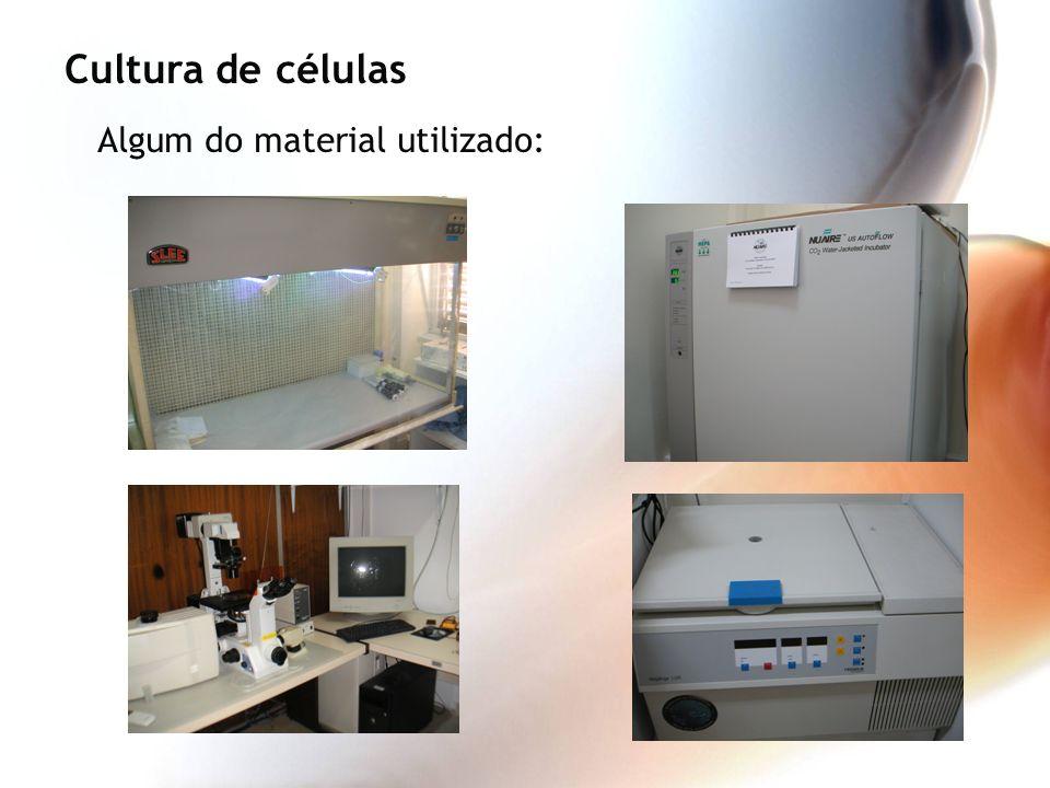 Algum do material utilizado: Cultura de células