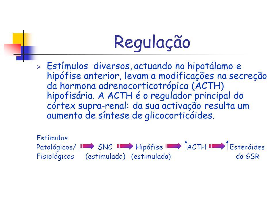 Regulação Estímulos diversos, actuando no hipotálamo e hipófise anterior, levam a modificações na secreção da hormona adrenocorticotrópica (ACTH) hipo