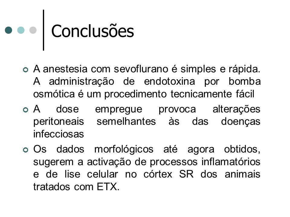 Conclusões A anestesia com sevoflurano é simples e rápida. A administração de endotoxina por bomba osmótica é um procedimento tecnicamente fácil A dos