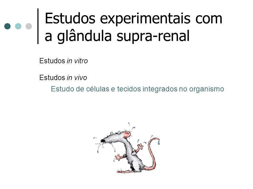 Estudos experimentais com a glândula supra-renal Estudos in vitro Estudos in vivo Estudo de células e tecidos integrados no organismo