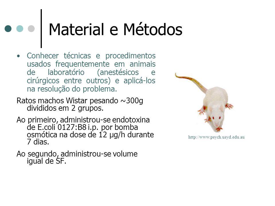 Material e Métodos Conhecer técnicas e procedimentos usados frequentemente em animais de laboratório (anestésicos e cirúrgicos entre outros) e aplicá-