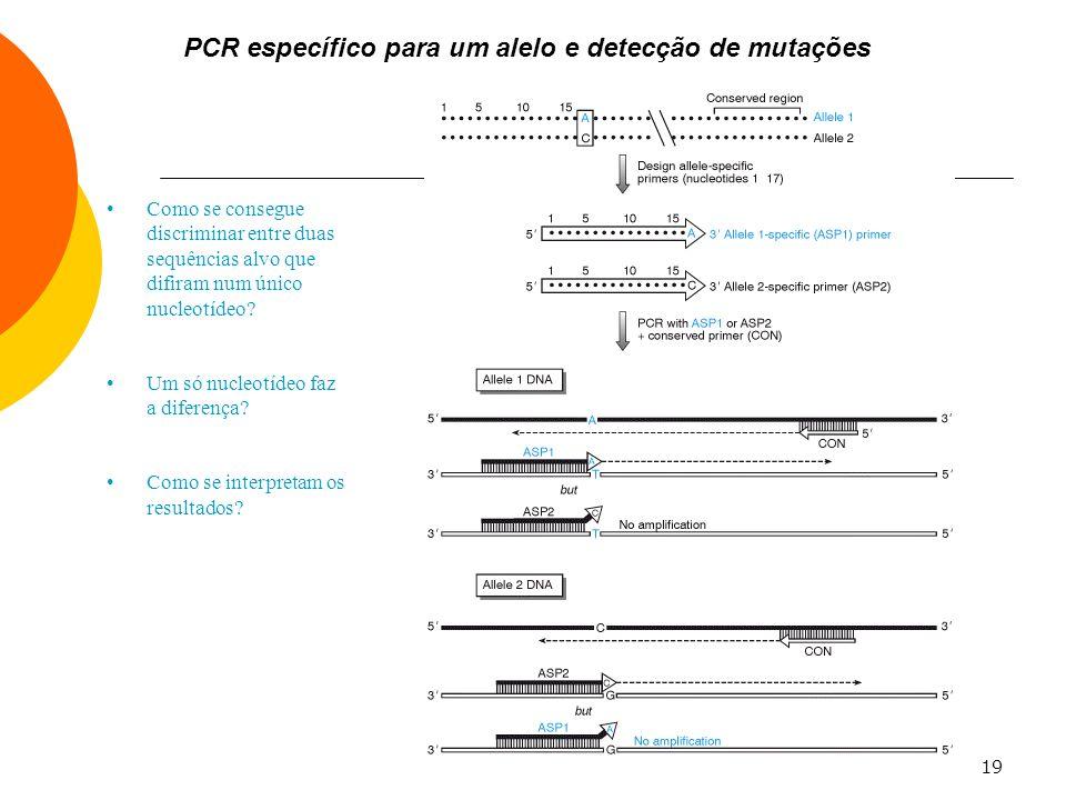 19 PCR específico para um alelo e detecção de mutações Como se consegue discriminar entre duas sequências alvo que difiram num único nucleotídeo? Um s